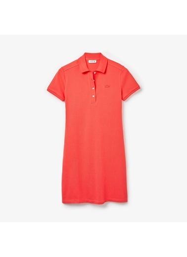 Lacoste Kadın  Tişört EF5473.4BY Pembe